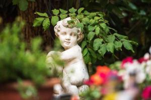 Garten DSC 4419-web